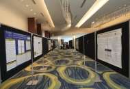 2017 Poster Session